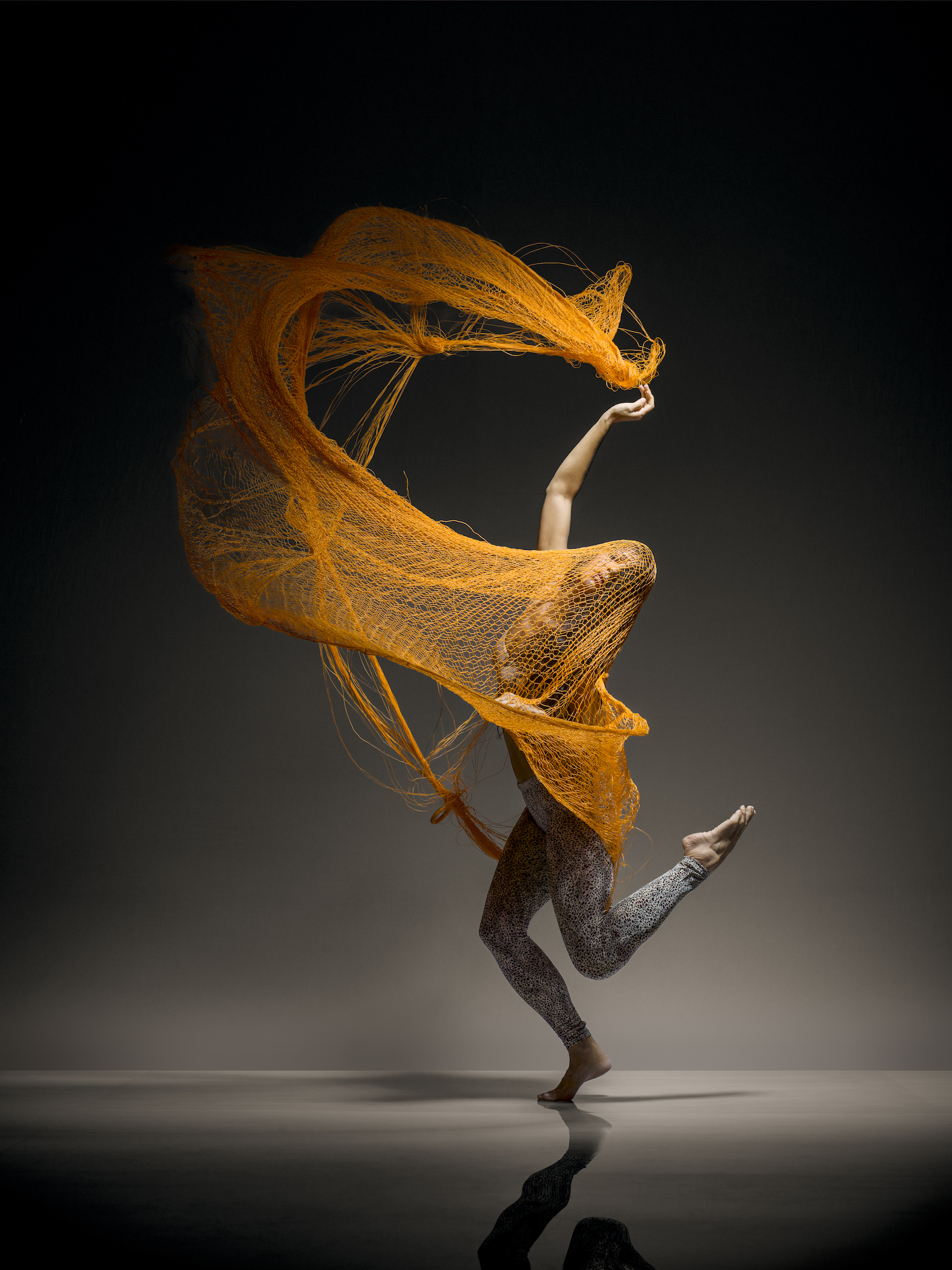 HYcopy - Lois Greenfield: Moving Still