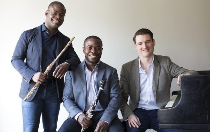 primary Introducing the McGill McHale Trio 1469886404 700x441 - Home page